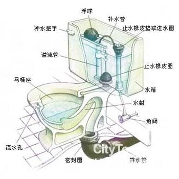 虹吸式马桶结构图及原理,马桶堵了怎么办?