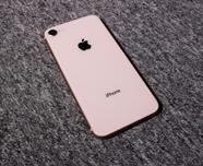 """""""苹果销量大幅度下降 为提高销量不惜使出多种""""促销手段"""""""